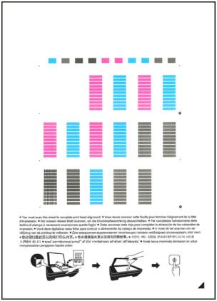 Canon Pixma Manuals Mg2500 Series Aligning The Print