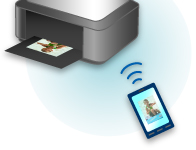 how to connect canon mg2900 printer to computer wirelessly